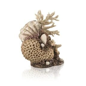 "Скульптуры в виде ""Коралловые ракушки"" (coral-shells ornament natural)"