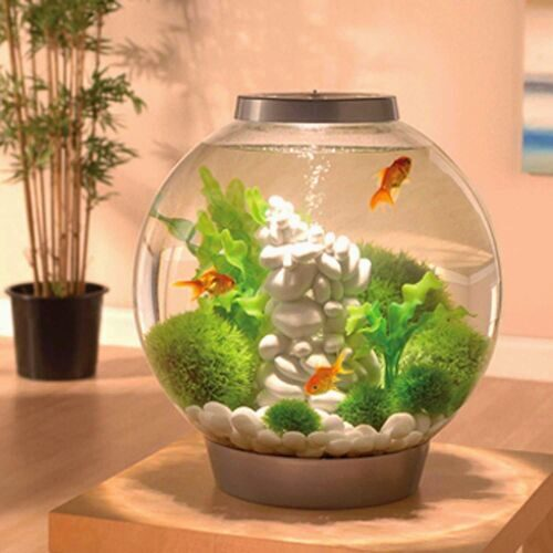 biorb-aquarium-kit-with-light-fixture.jpg